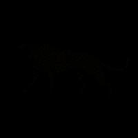 leopard Ausmalbilder